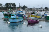 A la découverte du golfe du Morbihan - Discovering the Morbihan gulf in the south of Brittany