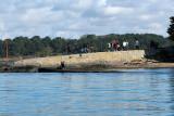 Sur le golfe du Morbihan en semi-rigide - MK3_9483 DxO Pbase.jpg