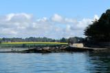 Sur le golfe du Morbihan en semi-rigide - MK3_9485 DxO Pbase.jpg