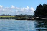 Sur le golfe du Morbihan en semi-rigide - MK3_9486 DxO Pbase.jpg