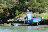 Sur le golfe du Morbihan en semi-rigide - MK3_9511 DxO Pbase.jpg