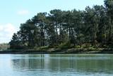 Sur le golfe du Morbihan en semi-rigide - MK3_9554 DxO Pbase.jpg