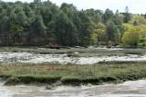 Le Bono et la rivière du Bono - MK3_9803 DxO Pbase.jpg