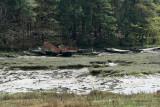 Le Bono et la rivière du Bono - MK3_9805 DxO Pbase.jpg