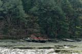 Le Bono et la rivière du Bono - MK3_9809 DxO Pbase.jpg