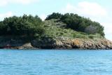 Sur le golfe du Morbihan en semi-rigide - MK3_9588 DxO Pbase.jpg