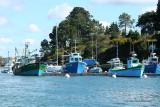 Sur le golfe du Morbihan en semi-rigide - MK3_9633 DxO Pbase.jpg