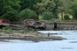 47  Semaine du Golfe 2009 - MK3_2069 DxO web.jpg