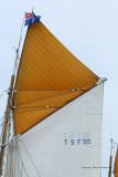4218 Semaine du Golfe 2009 - MK3_5373 DxO  web.jpg