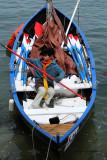 4599 Semaine du Golfe 2009 - MK3_5631 DxO  web.jpg