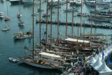 4462 Regates Royales de Cannes Trophee Panerai 2009 - MK3_7021 DxO Pbase.jpg