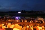 8 Les Couleurs du Val d Oise 2010 - Festival du feu d'artifice MK3_9456 WEB.jpg