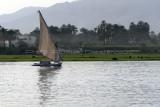 3299 Vacances en Egypte - MK3_2227_DxO WEB.jpg