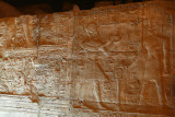 3375 Vacances en Egypte - MK3_2303_DxO WEB2.jpg
