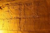 3385 Vacances en Egypte - MK3_2313_DxO WEB2.jpg
