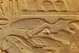 3398 Vacances en Egypte - MK3_2326_DxO WEB2.jpg