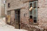 3438 Vacances en Egypte - MK3_2366_DxO WEB.jpg