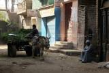3447 Vacances en Egypte - MK3_2375_DxO WEB.jpg