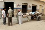 3455 Vacances en Egypte - MK3_2383_DxO WEB.jpg