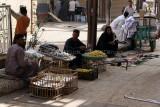 3466 Vacances en Egypte - MK3_2394_DxO WEB.jpg