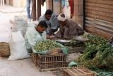 3469 Vacances en Egypte - MK3_2397_DxO WEB.jpg