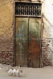 3506 Vacances en Egypte - MK3_2437_DxO WEB.jpg