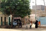 3539 Vacances en Egypte - MK3_2470_DxO WEB.jpg