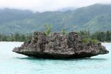 2 weeks on Mauritius island in march 2010 - 2503MK3_1511_DxO WEB.jpg