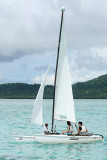 2 weeks on Mauritius island in march 2010 - 2513MK3_1520_DxO WEB2.jpg