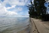 2 weeks on Mauritius island in march 2010 - 2554MK3_1561_DxO WEB.jpg