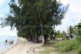 2 weeks on Mauritius island in march 2010 - 2565MK3_1573_DxO WEB.jpg