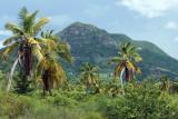 2 weeks on Mauritius island in march 2010 - 2613MK3_1621_DxO WEB.jpg