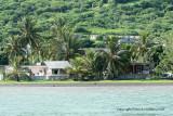 2 weeks on Mauritius island in march 2010 - 2241MK3_1467_DxO WEB.jpg