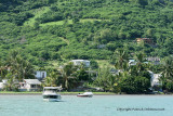 2 weeks on Mauritius island in march 2010 - 2242MK3_1468_DxO WEB.jpg