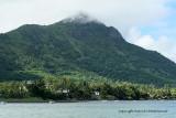 2 weeks on Mauritius island in march 2010 - 2221MK3_1446_DxO WEB.jpg