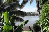 2 weeks on Mauritius island in march 2010 - 2770MK3_1776_DxO WEB.jpg