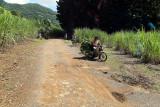 2 weeks on Mauritius island in march 2010 - 2788MK3_1795_DxO WEB.jpg