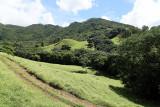 2 weeks on Mauritius island in march 2010 - 2802MK3_1809_DxO WEB.jpg
