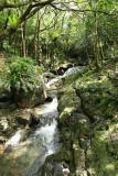 2 weeks on Mauritius island in march 2010 - 2843MK3_1850_DxO WEB.jpg