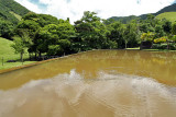 2 weeks on Mauritius island in march 2010 - 2870MK3_1881_DxO WEB.jpg