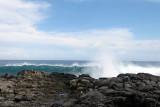 2 weeks on Mauritius island in march 2010 - 2897MK3_1910_DxO WEB.jpg