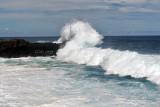 2 weeks on Mauritius island in march 2010 - 2902MK3_1915_DxO WEB.jpg