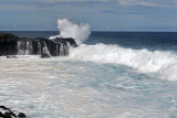 2 weeks on Mauritius island in march 2010 - 2907MK3_1920_DxO WEB.jpg