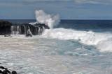 2 weeks on Mauritius island in march 2010 - 2908MK3_1921_DxO WEB.jpg