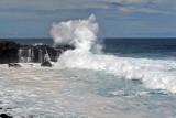 2 weeks on Mauritius island in march 2010 - 2909MK3_1922_DxO WEB.jpg