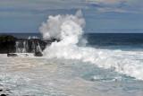 2 weeks on Mauritius island in march 2010 - 2910MK3_1923_DxO WEB.jpg