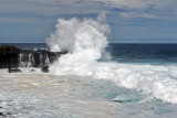 2 weeks on Mauritius island in march 2010 - 2911MK3_1924_DxO WEB.jpg