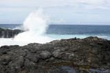 2 weeks on Mauritius island in march 2010 - 2913MK3_1926_DxO WEB.jpg