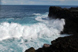 2 weeks on Mauritius island in march 2010 - 2918MK3_1931_DxO WEB.jpg