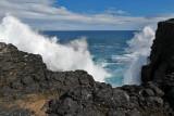 2 weeks on Mauritius island in march 2010 - 2927MK3_1940_DxO WEB.jpg